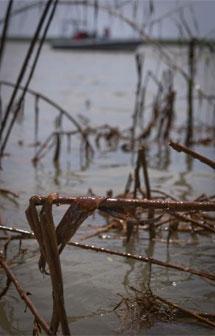 Crudo acumulado en Luisiana. | Reuters