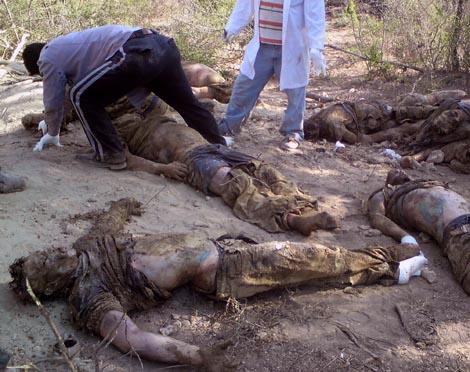 Parte de los 145 cuerpos desenterrados de la fosas de Tamaulipas. | France Presse
