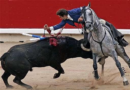 bloody bull.