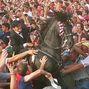 Los caballos son los protagonistas indiscutibles de estas fiestas (E.M.)