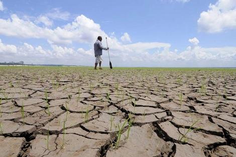 La sequía en el Amazonas, visible desde el espacio
