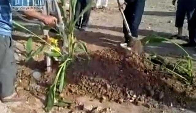 Un grupo cava una tumba para los muertos durante las protestas en Hama. | Reuters