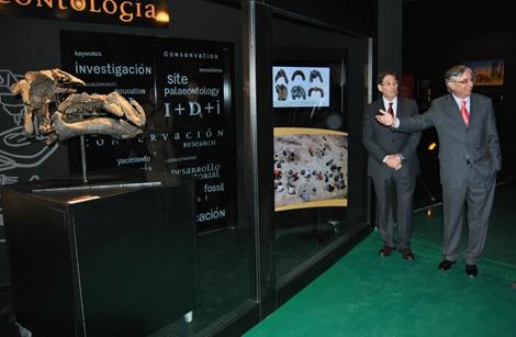 Presentación de los nuevos fósiles expuestos en Dinópolis. | Dinopolis