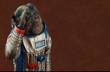 Una mona interpreta a Able en la película 'Noche en el museo'. | NASA
