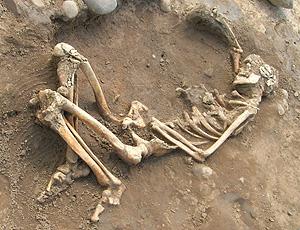 Posición en la que fueron hallados los restos (Fotos: U. York)