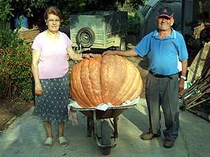 Primitivo G. Domingo, su esposa y la calabaza de 132 kilos. (Foto: Juan Carlos Domingo)
