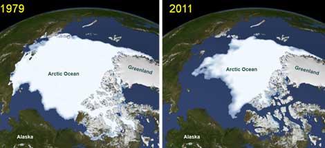 El artico antes y despues de adelgazar